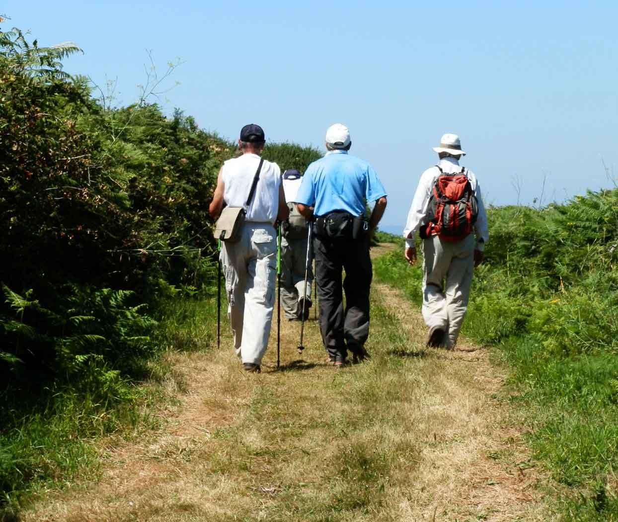Ruta sendeirismo